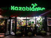 Cvećara Kazablanka na još jednoj lokaciji - U samom srcu Beograda
