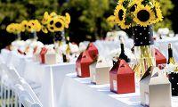 Cveće za letnje venčanje (2. deo)